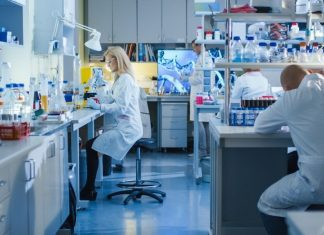 How To Increase Productivity in Your Lab